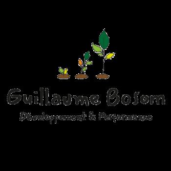 Logo-cabinet-développement-et-performance-ok